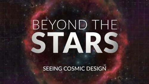 Beyond the Stars: Seeing Cosmic Design