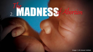 2. The Madness of Abortion