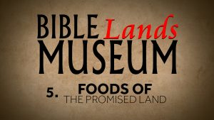 5. Foods of the Promised Land | Bible Lands Museum