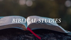 Category-Biblical-Studies