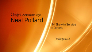 14. Grow in Service to Others