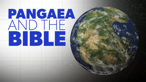 Pangaea and the Bible