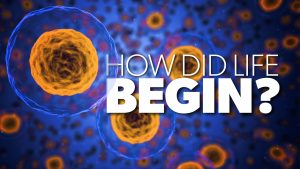 How Did Life Begin? | Proof for God