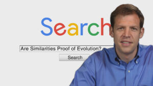 Are Similarities Proof of Evolution? | Search Creation and Evolution