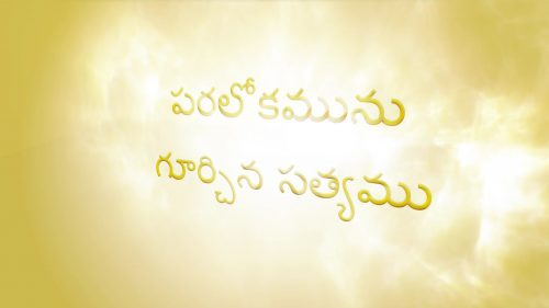 పరలోకమును గూర్చిన సత్యము (Telugu The Truth About Heaven)