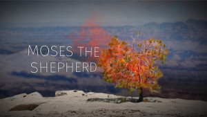 Part 2: Moses the Shepherd | The Story of Moses