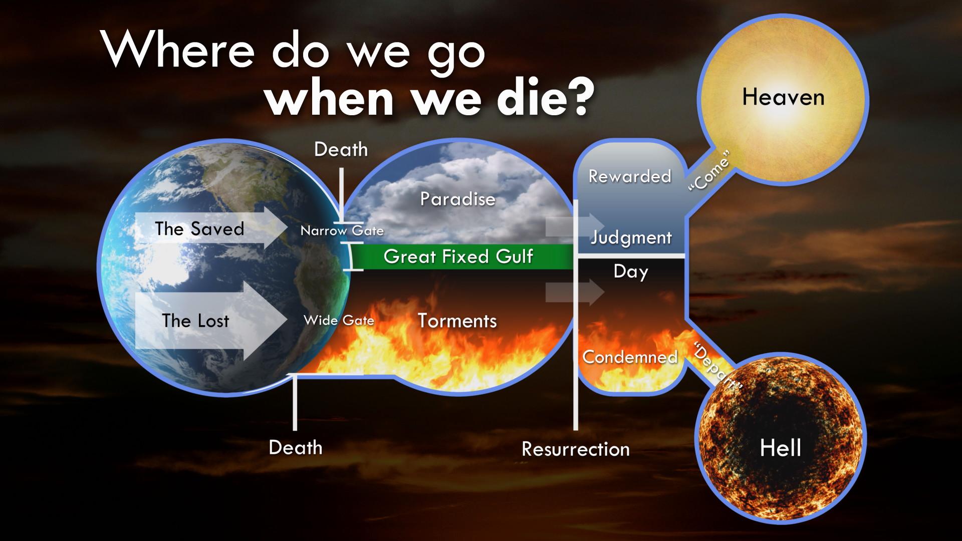 Where Do We Go When We Die Program Thumbnail